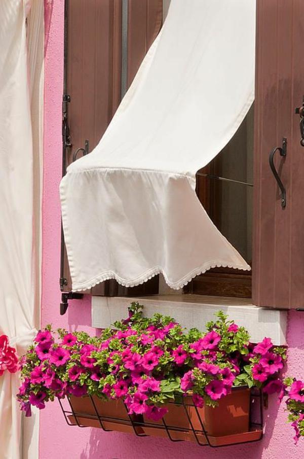 balkonpflanzen schöne petunien balkon gestalten