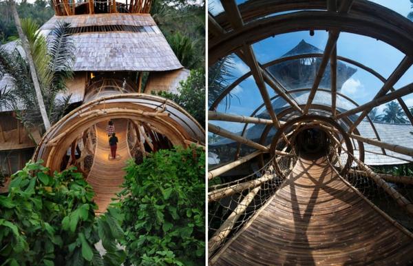 bambus holz langlebigkeit nachhaltigkeit
