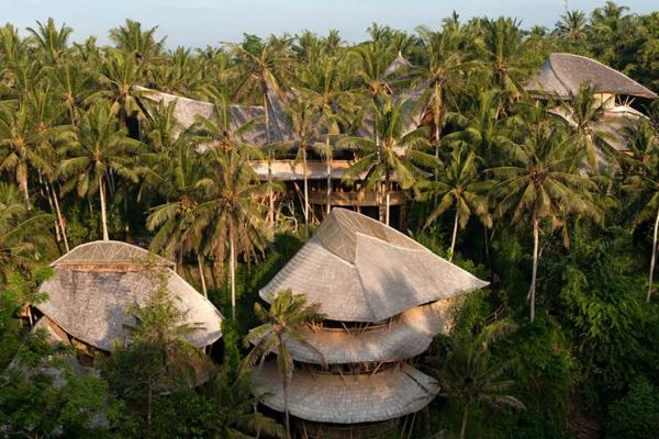 bambus holz traditionelle architektur palmen