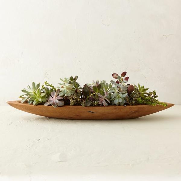 baumstamm deko diy projekte zimmerpflanzen zubehör