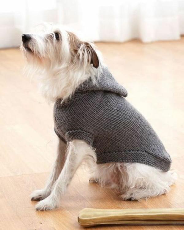 Free Dog Sweater Crochet Pattern For Maltese