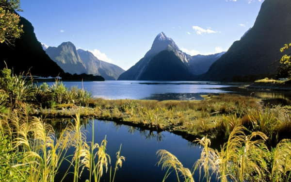entspannungsübungen bei stress schöne landschaft gebirge teich pflanzen