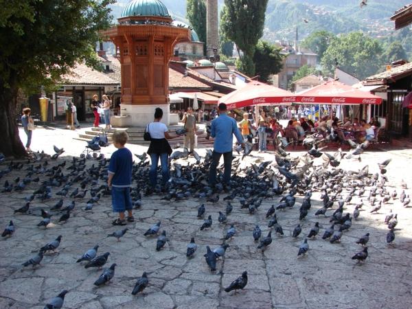 hauptstadt bosnien herzegowina sarajewo interessante orte