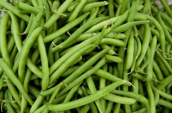 sternzeichen zwilling passende ernährung grüne bohnen