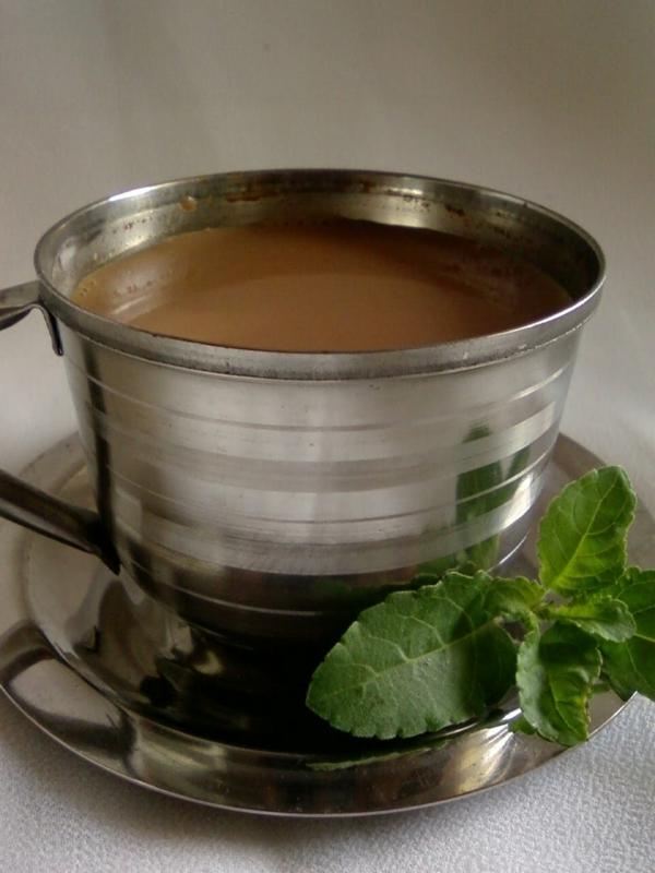 indischer tee mit tulsi langes leben kräuter und heilpflanzen