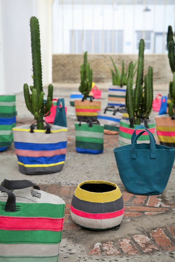innendesign mexikanische deko ideen farbmuster kakteen