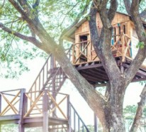 Möchten Sie ein Kinderbaumhaus bauen? Hier sind unsere Tipps zum Thema