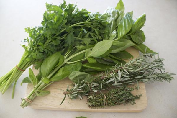 kochen mit kräutern für langes leben kräuter und heilpflanzen