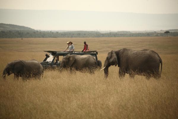nachhaltiger tourismus afrika fotosafari