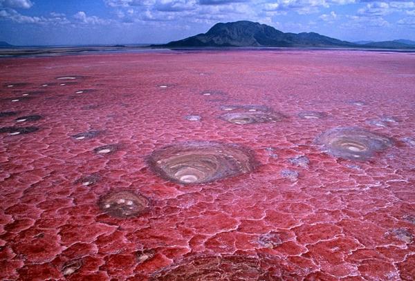 planet erde lake notron tanzania