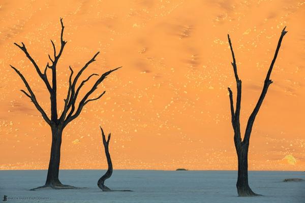 planet erde namib wüste namibien