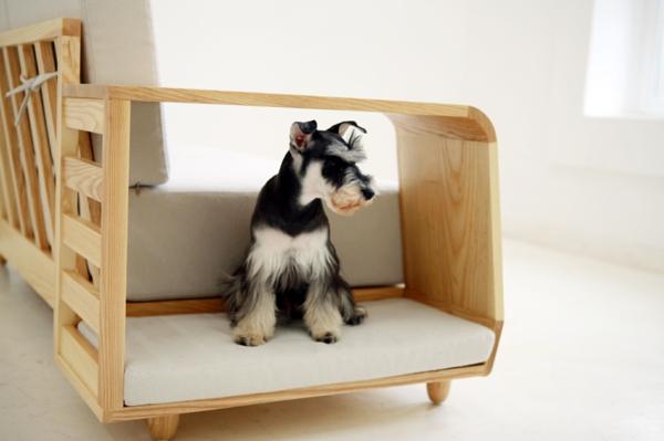 plegeleichte haustiere Seungji Mun couch holz hunde häuschen