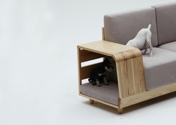 plegeleichte haustiere sofa katze hund