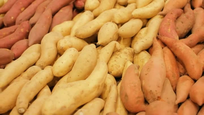 probiotika kartoffel sorten gesund