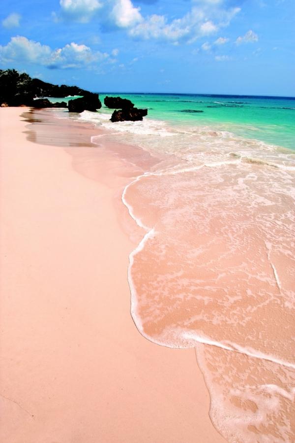 schönste-strände Pink Sand Beach Bahamas