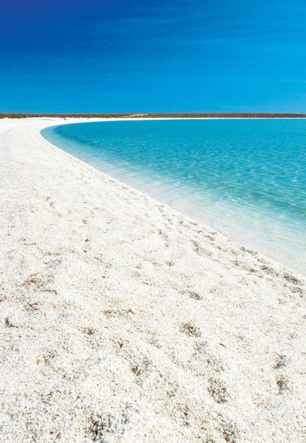 schönste strände shell beach australia