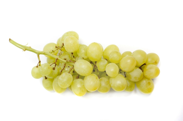 schütze sternzeichen trauben essen gesund