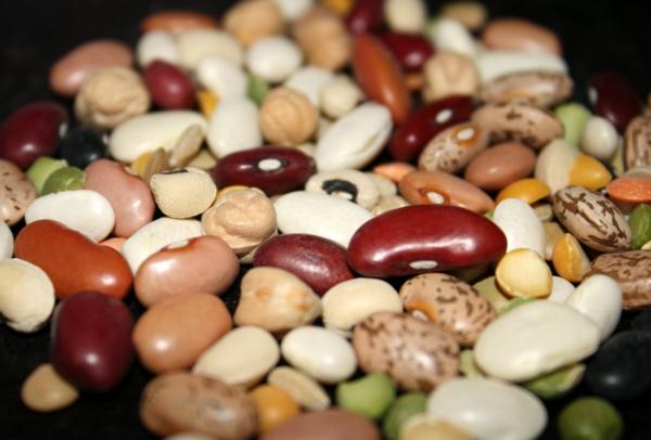 sternzeichen schütze bohnen gesunde ernährung