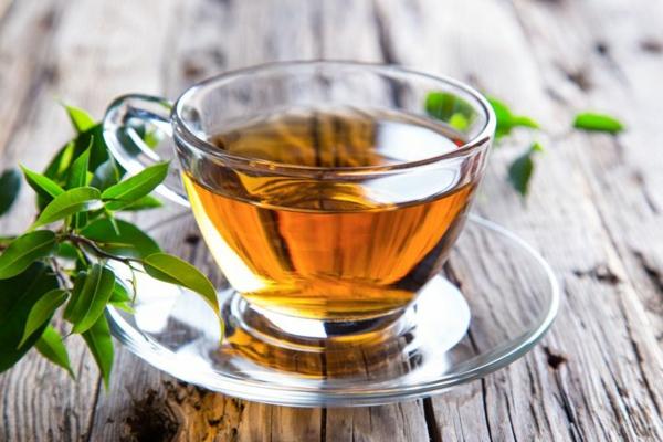 tee trinken langes leben kräuter und heilpflanzen