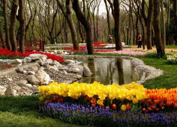 tulpen bilder türkei emirgan park frühling