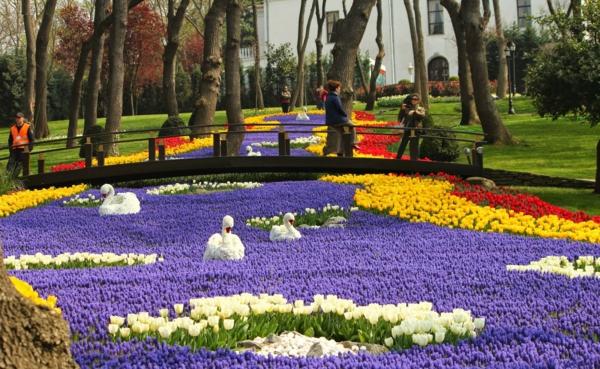 tulpen bilder türkei emirgan park istanbul schwäne fluss brücke