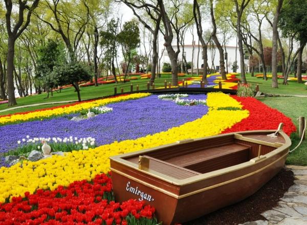 tulpen bilder wiese boot emirgan park istanbul