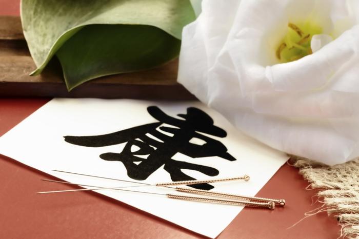 Abnehmen Akupunktur nadeln traditionelle chinesische medizin