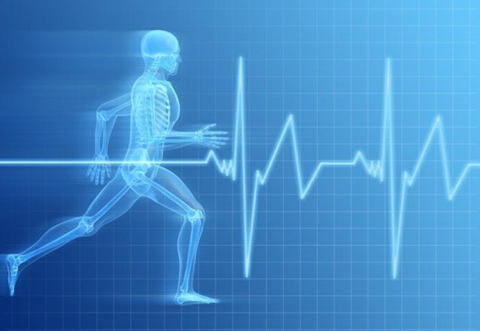 Ausdauer Training sportarten herz und körper