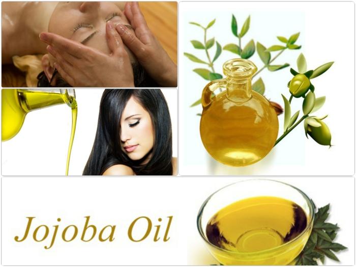 Jojobaöl Haare Haut Schönheitstipps Ideen