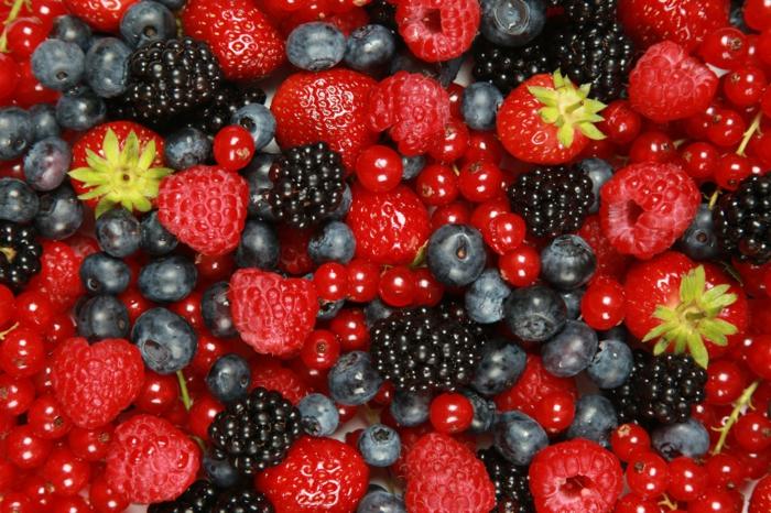 antioxidationsmittel sommerfrüchte waldfrüchte