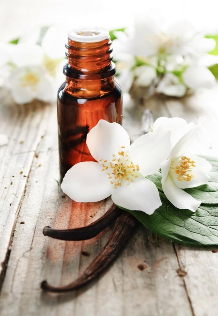 ätherische öle oregano bio jasmin vanille