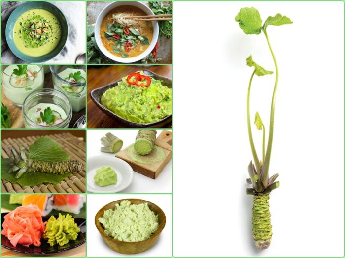 echte wasabi pflanze asiatische gerichte kochen mit wasabi