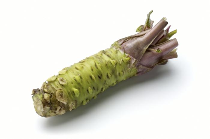 echte wasabi pflanze wurzel essbar