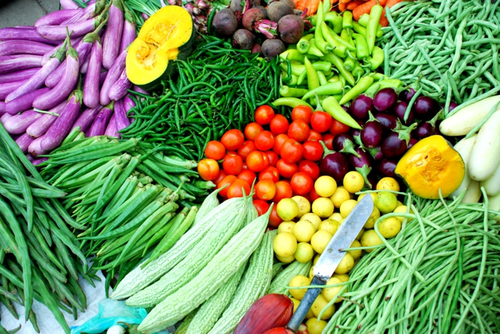 ersten gemüsegarten anlegen tipps für anfänger bio gemüse