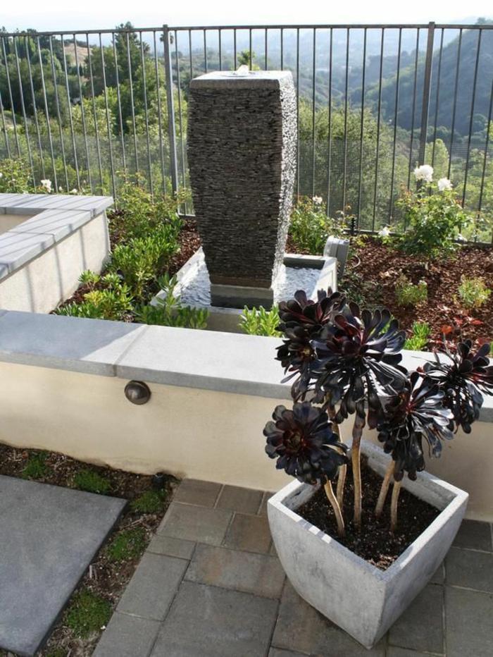 Pflanzen Nach Feng Shui best feng shui pflanzen eingangsbereich images thehammondreport
