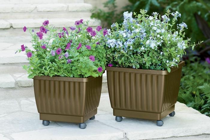 gartengestaltung ideen bewegliche pflanzenbehälter