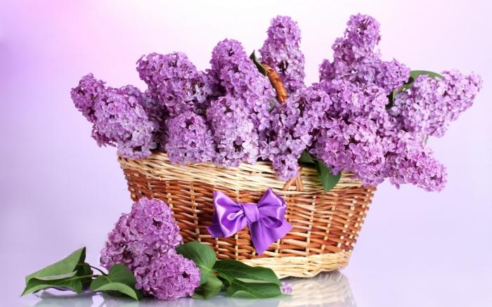 gartenpflanze flieder lila rustikale blumendeko