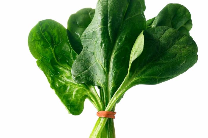 gemüsegarten anlegen tipps bio gemüse gesundes essen