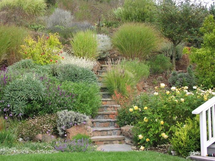 gräser im garten gartengestaltung treppe