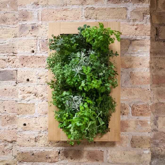 grüne wände kräuter wandgestaltung