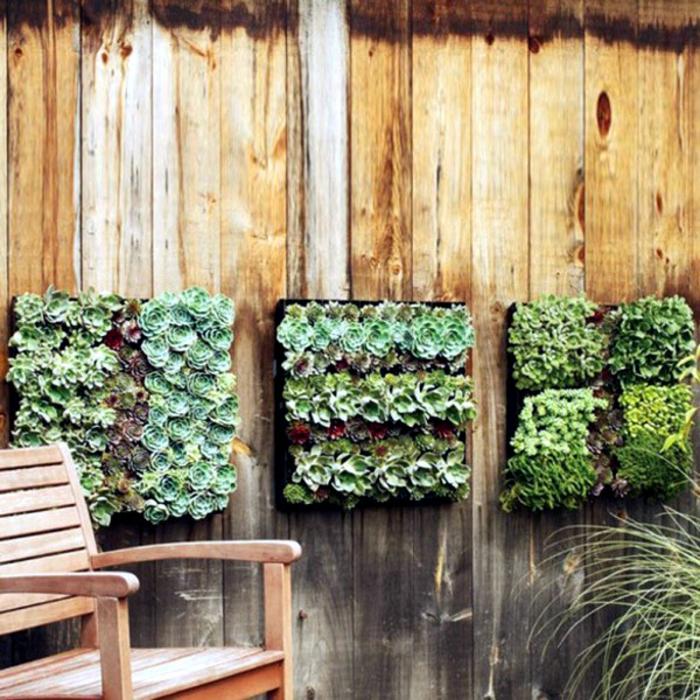 grüne wände vertikale gärten sukkulenten