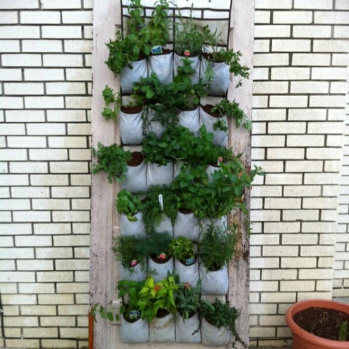 grüne wände vertikale wandbegrünung