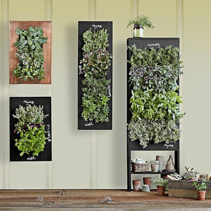 grüne wände wanddeko vertikale begrünung kräuter pflanzen