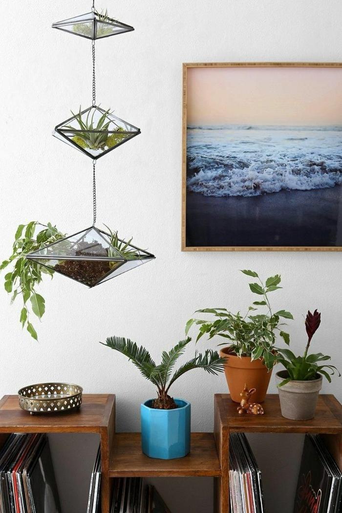 inneneinrichtung ideen wanddekoration foto hängende pflanzen sukkulenten