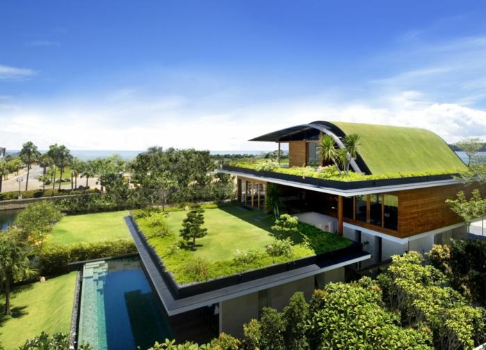 Modernes Haus Bauen Natur Dachbegrünung