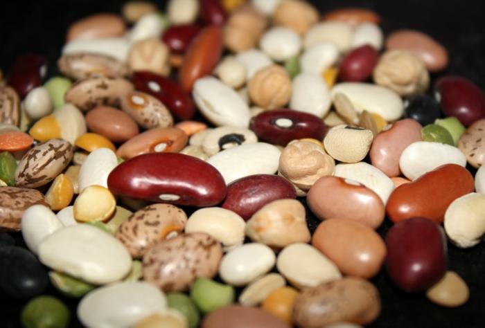 oxidativer stress bohnen nüsse