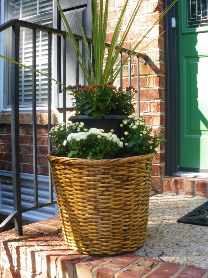 pflanzgefäße außenbereich den eingang verschönern