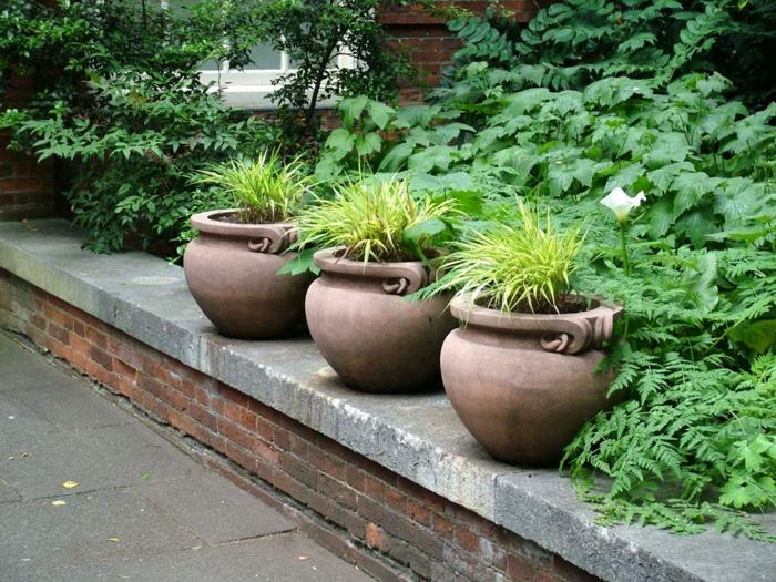 pflanzgefäße außenbereich gartenideen pflanzen