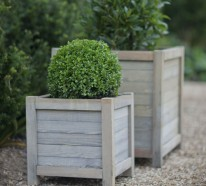 Pflanzkasten aus Holz – Schöne Pflanzenbehälter als Dekoartikel