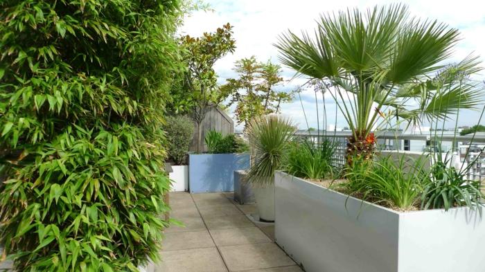 moderne terrassengestaltung große pflanzgefäße terrasse bepflanzen